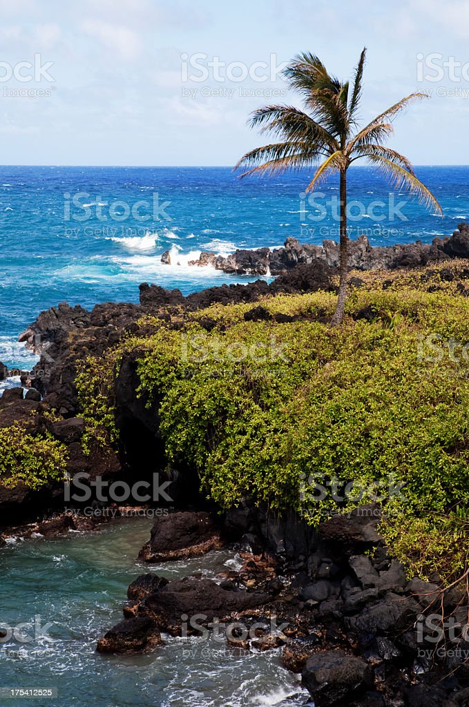 Waianapanapa State Park Maui Hawaii royalty-free stock photo