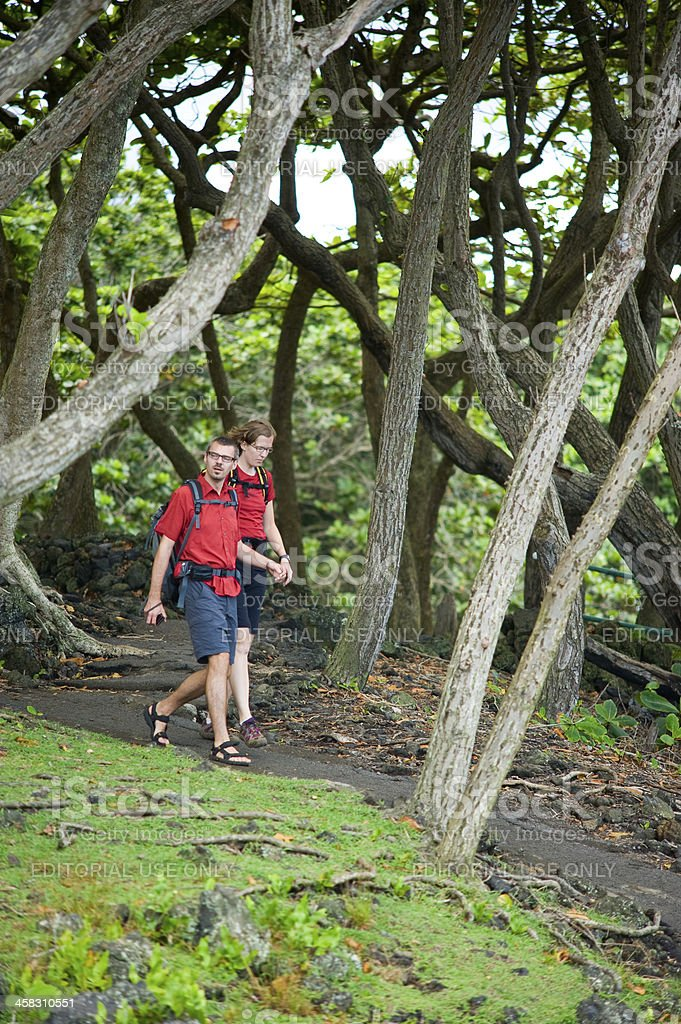 Wai'anapanapa State Park royalty-free stock photo