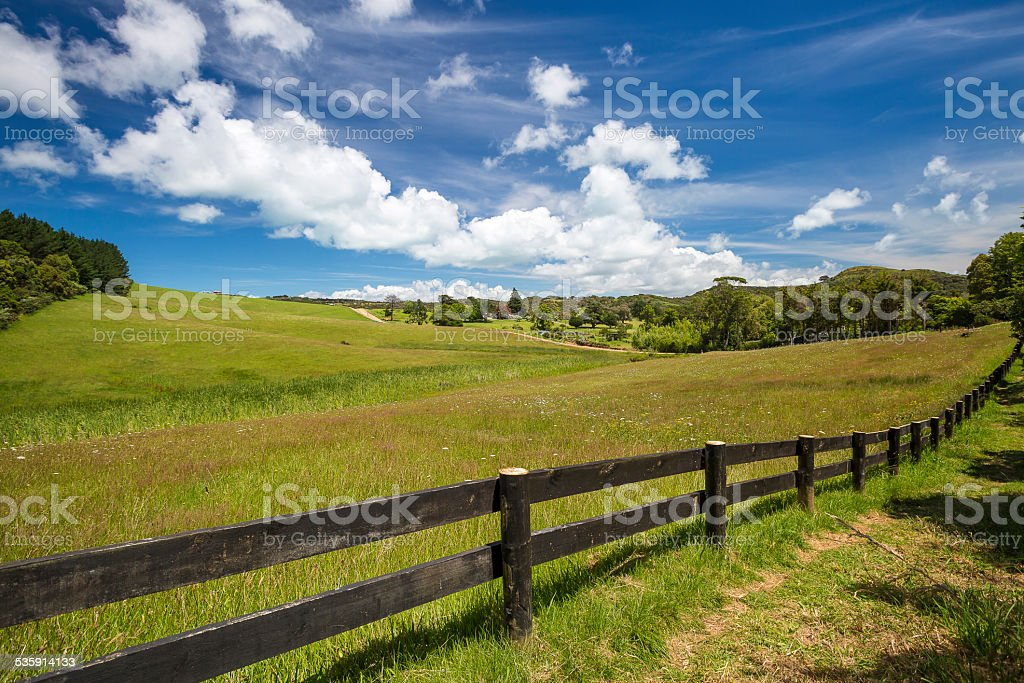 Waiheke Island stock photo