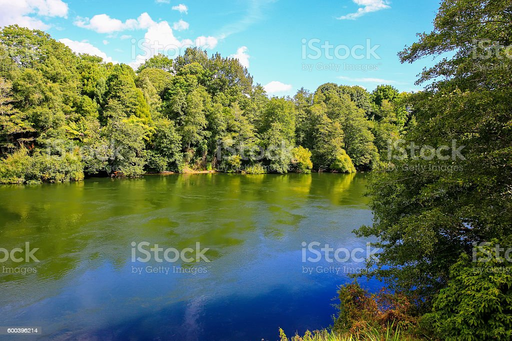 Waikato River, Hamilton Gardens, North Island, New Zealand stock photo