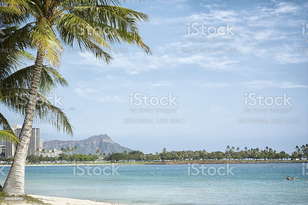 Waikiki Beach, Palm Tree, Diamond Head, Honolulu, Hawaii royalty-free stock photo