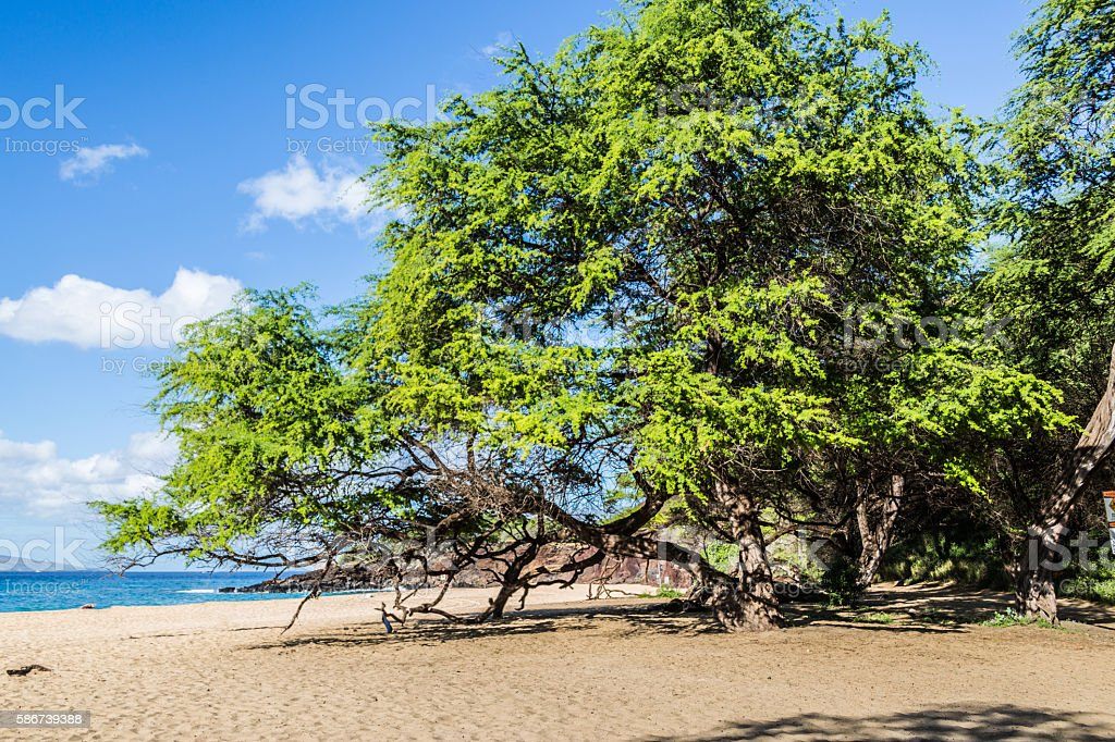 Wailea Beach, Maui stock photo