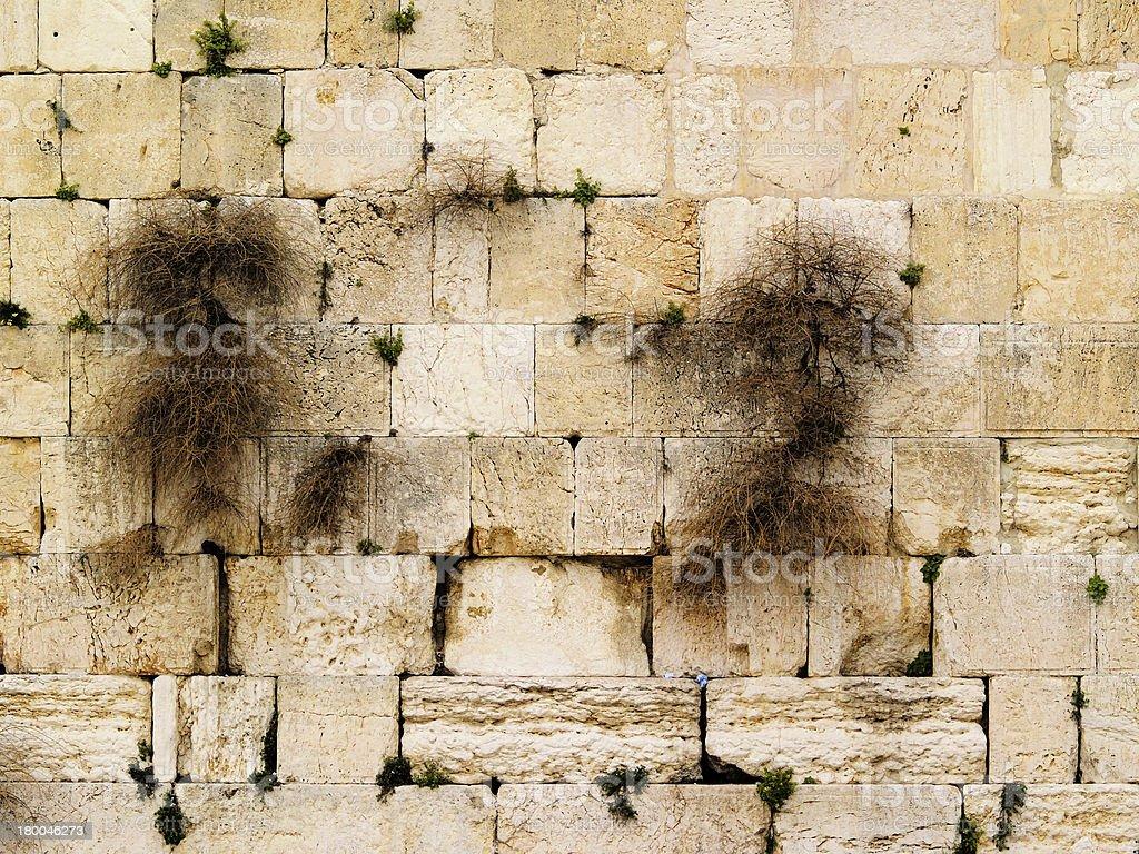 Wailing Wall royalty-free stock photo
