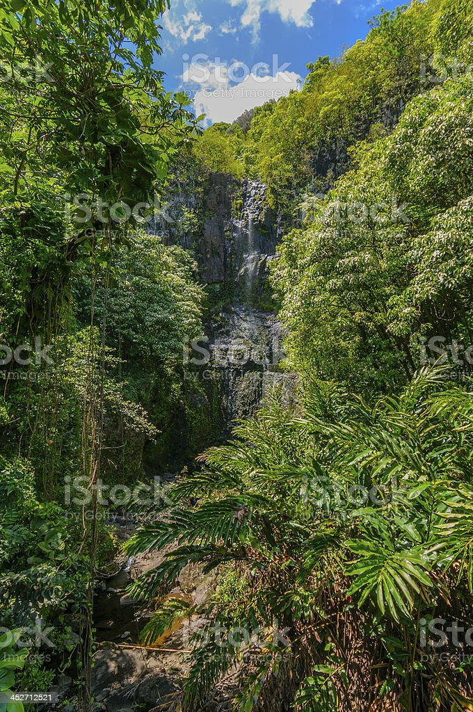 Wailua Falls in a lush tropical valley, Maui, Hawaii, USA stock photo