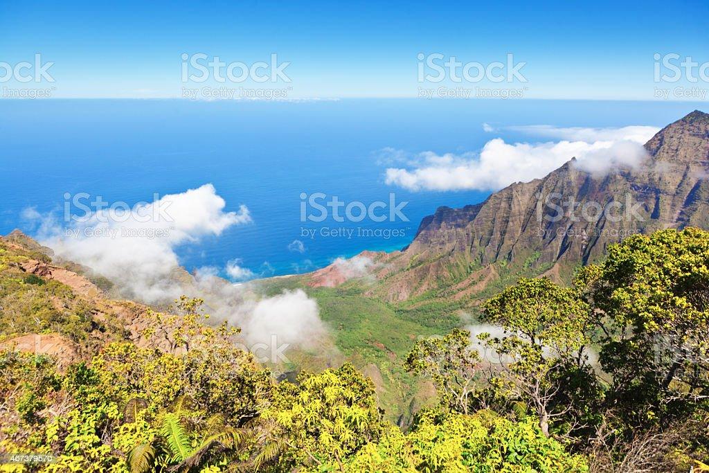 Waimea Canyon and Na Pali Coast of Kauai Hawaii stock photo