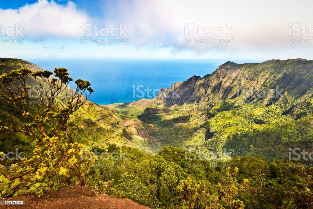Waimea Canyon Kalalau Beach, Kauai, Hawaii stock photo