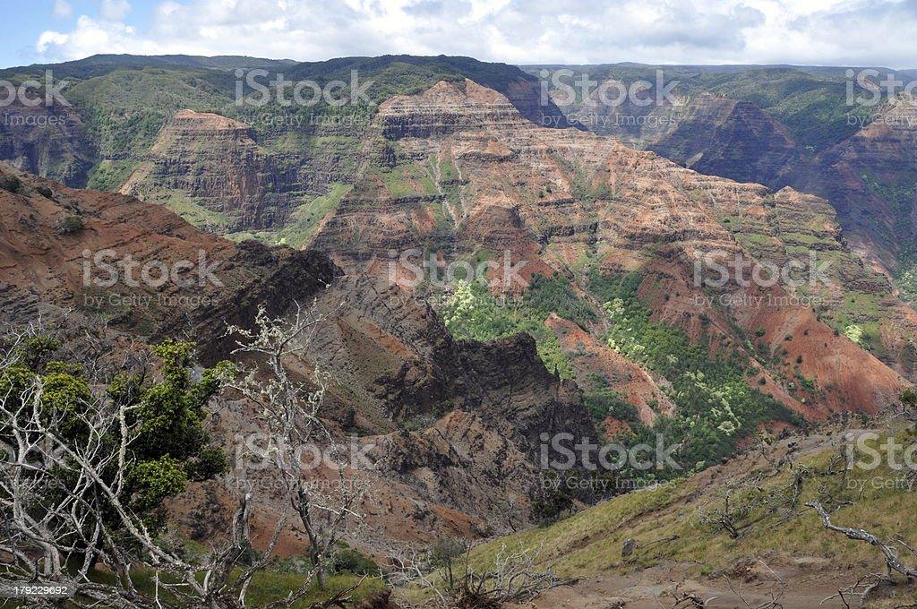 Waimea Canyon Lookout on Kauai, Hawaii royalty-free stock photo