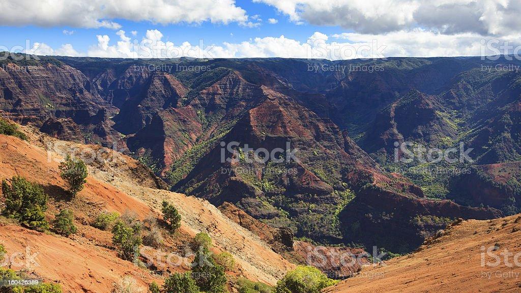Waimea Canyon Panorama royalty-free stock photo