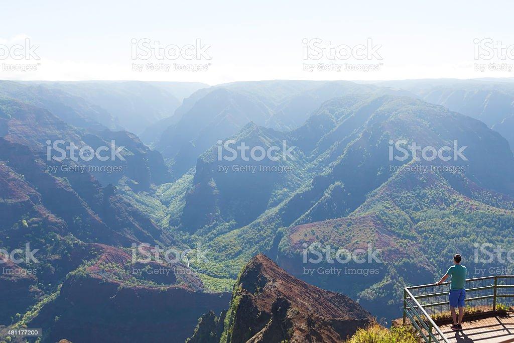 waimea canyon view stock photo