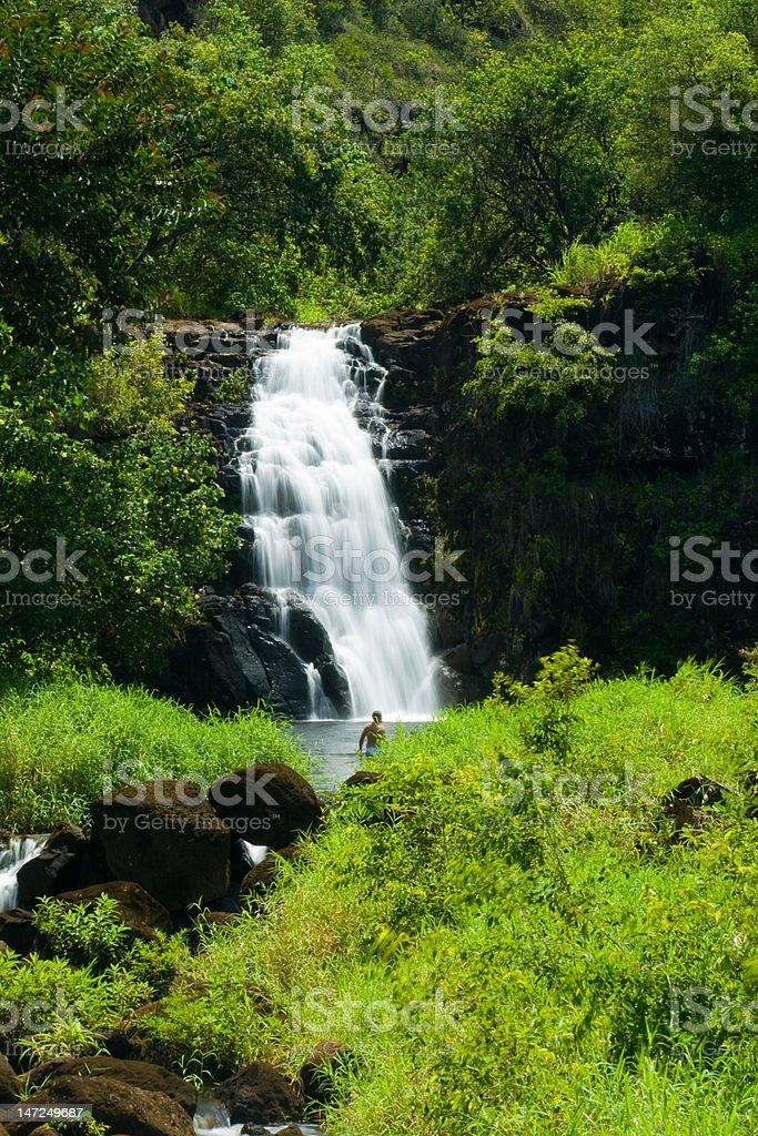 Waimea Waterfall stock photo