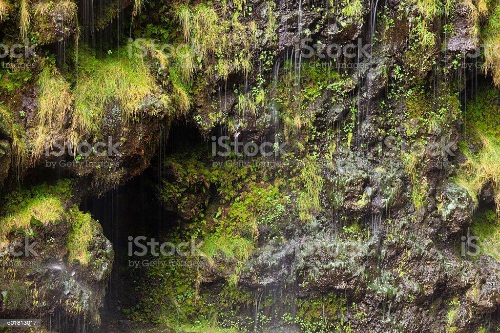 Waimoku Falls, Maui stock photo