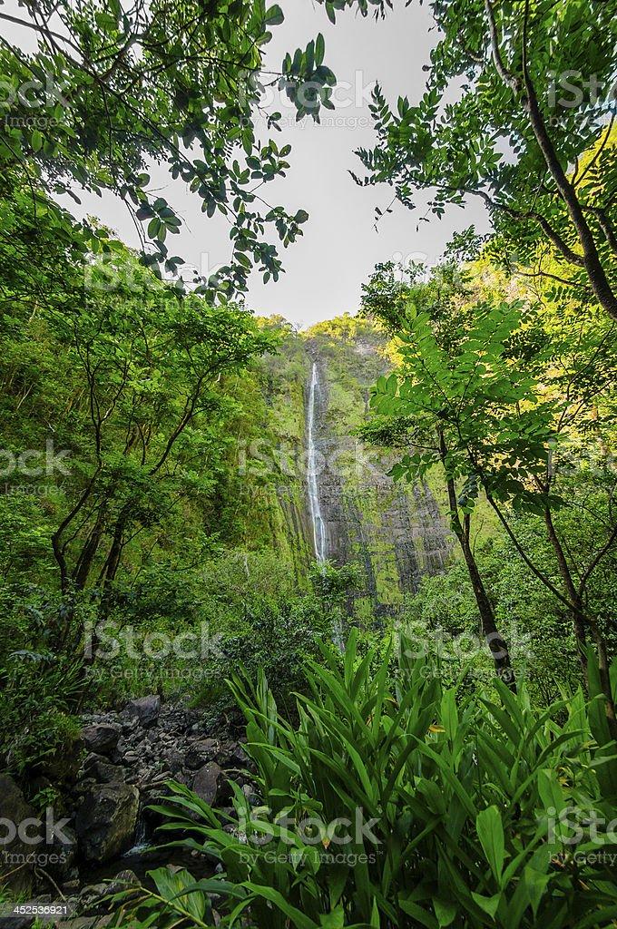 Waimoku Falls on The Road to Hana, Maui, Hawaii, USA stock photo