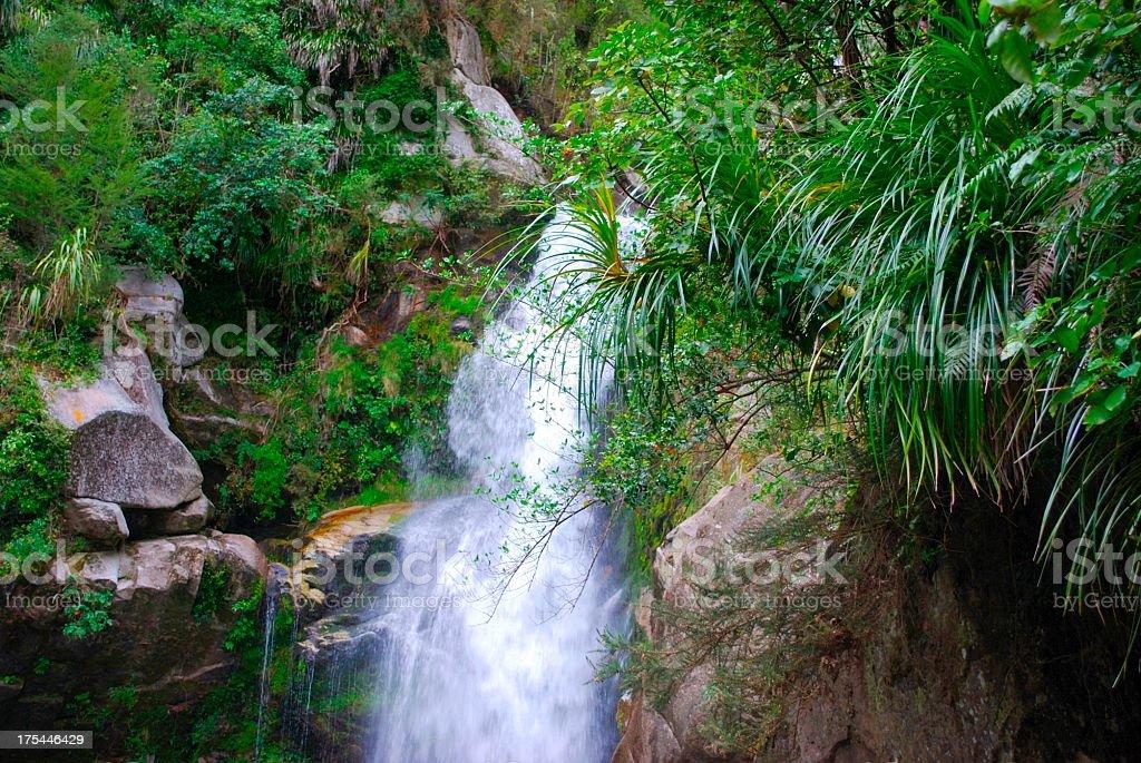 Wainui Falls, Golden Bay, NZ stock photo