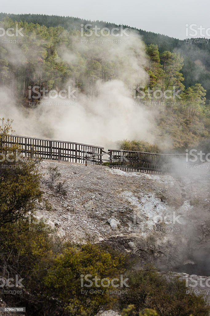 Waiotapu geothermal area in New Zealand stock photo