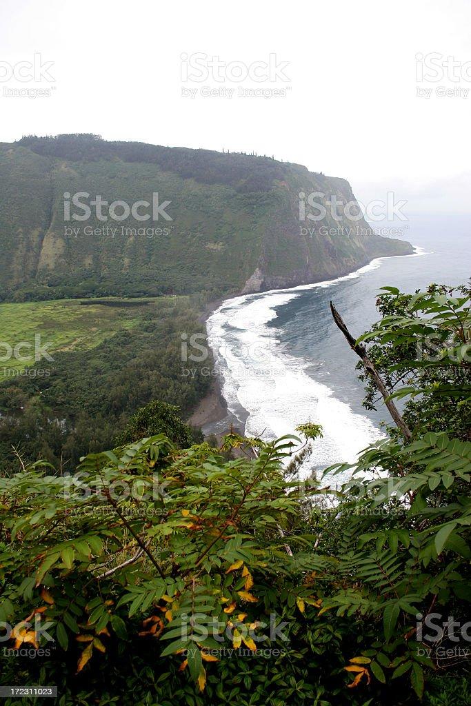 Waipi'o Bay stock photo