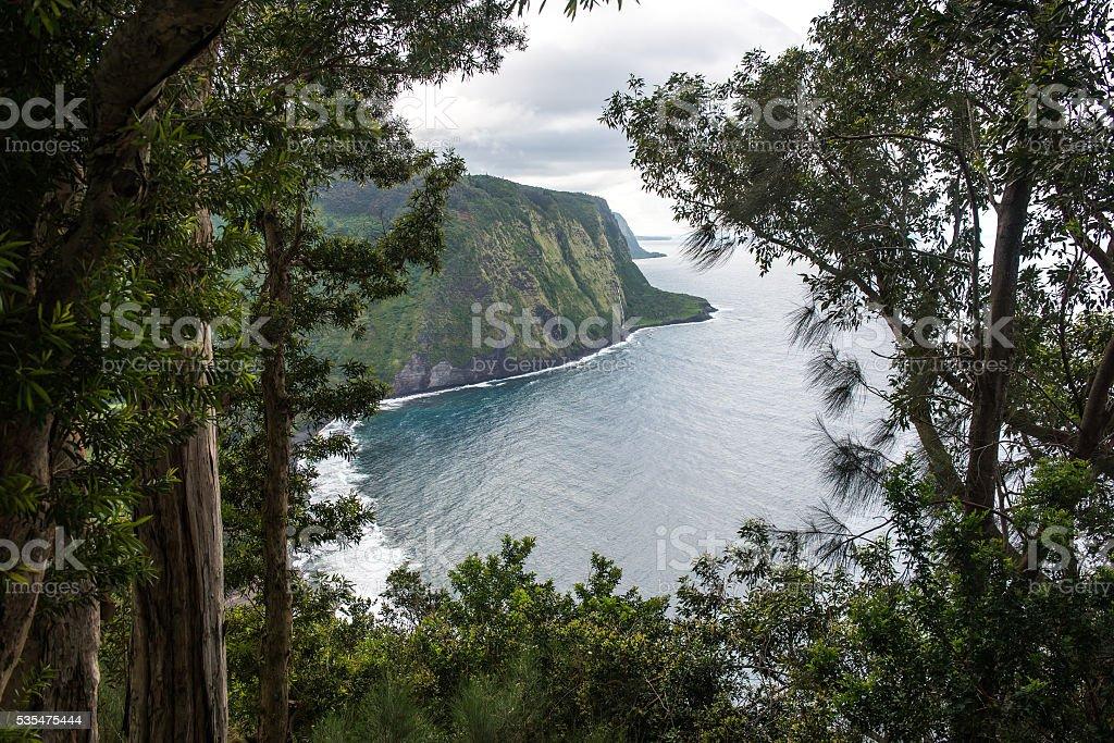 Waipio valley lookout stock photo