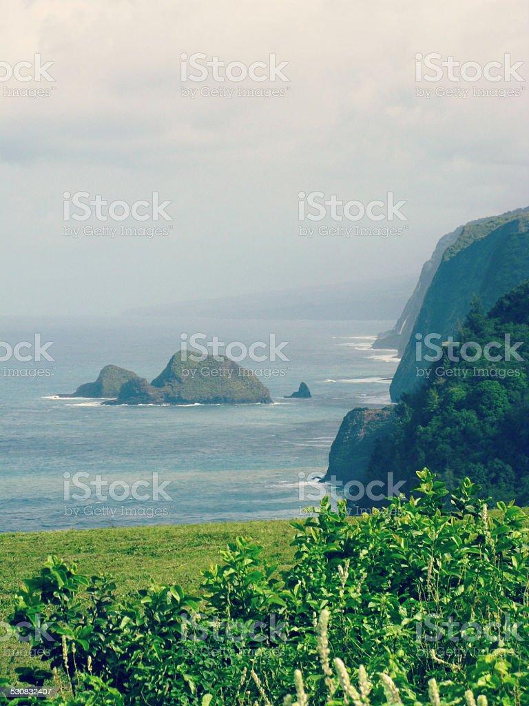 Waipi'o Valley Trail, Volcanic Mountain Rocky Hawaii Coast stock photo