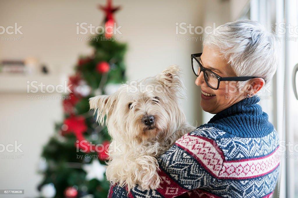 Waiting for Christmas stock photo