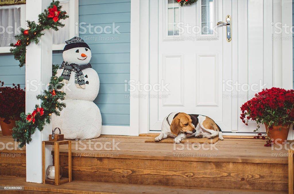 Waiting for Santa stock photo