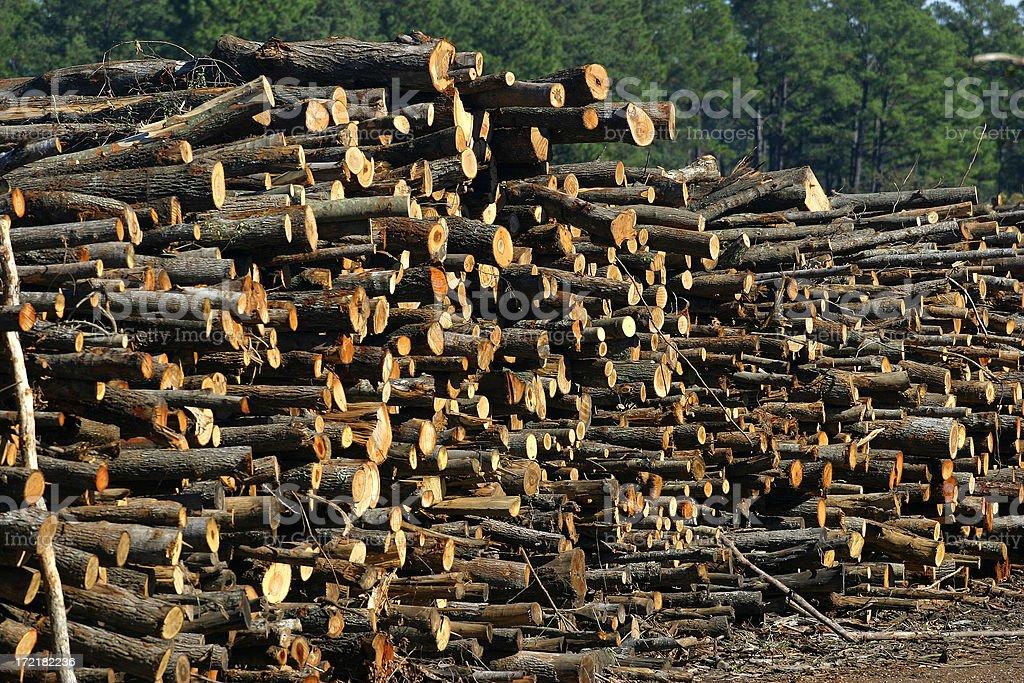 Waiting Lumber stock photo