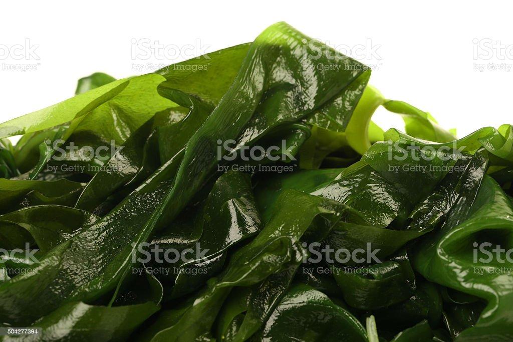 wakame stock photo