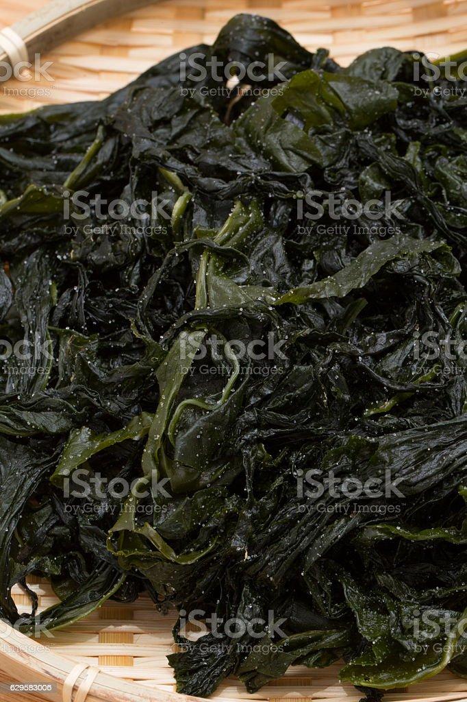 Wakame seaweed stock photo