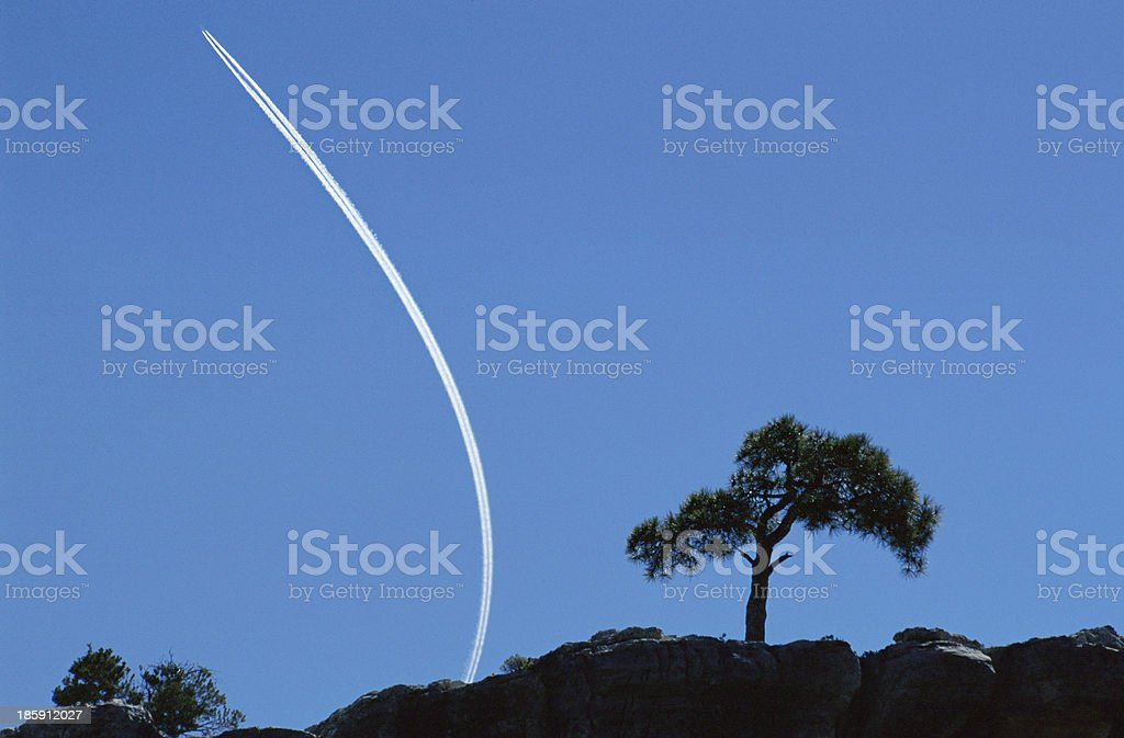 Wake of a plane in the sky and lonely tree stock photo