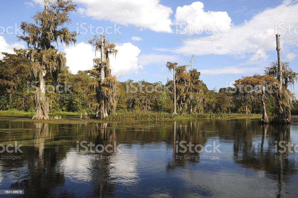 Wakulla Springs State Park, Florida stock photo