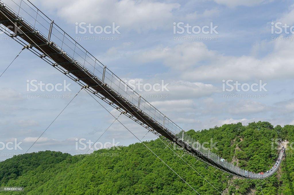 Waldlandschaft mit Seilbrücke stock photo