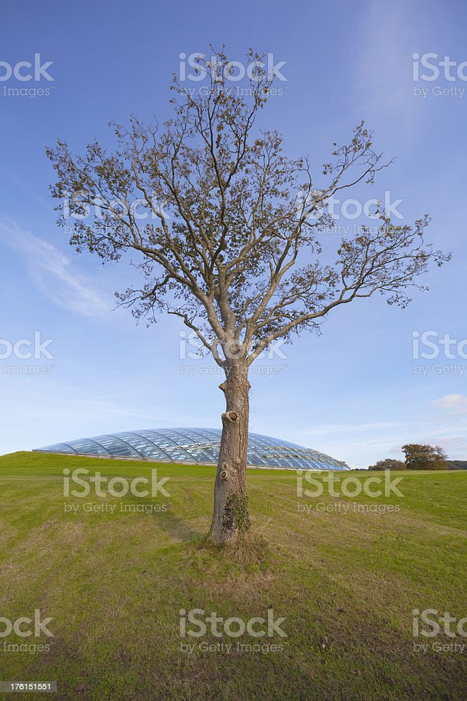 Wales National Botanic Gardens royalty-free stock photo