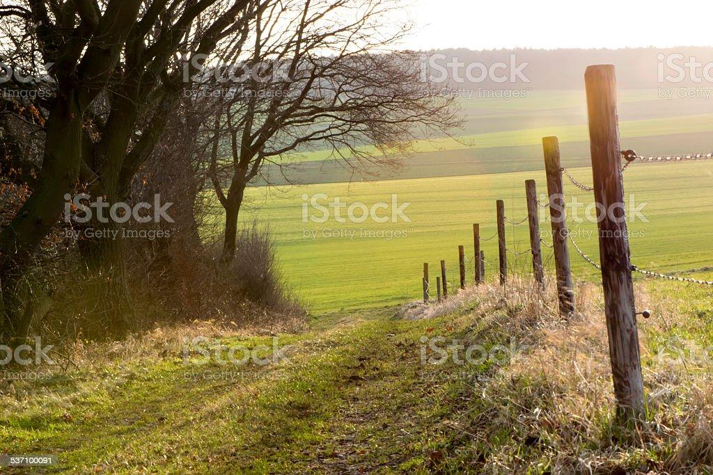 walk along a paddock fence stock photo