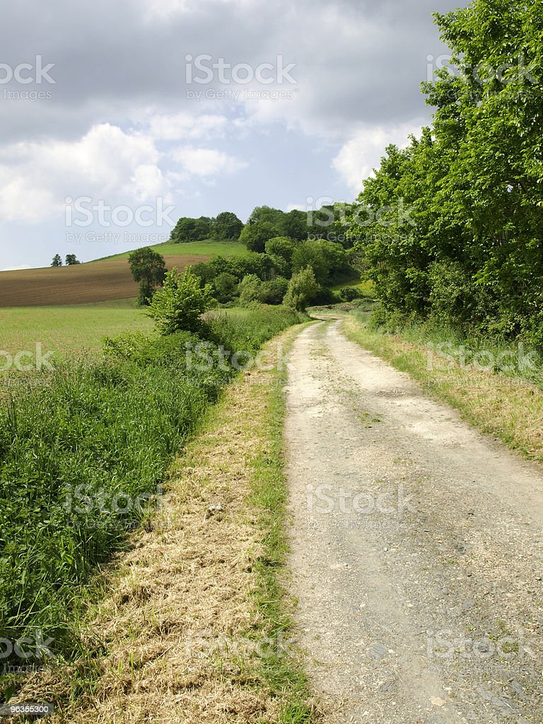 walk in field royalty-free stock photo