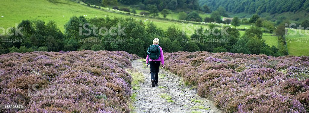 Walk in the country royalty-free stock photo
