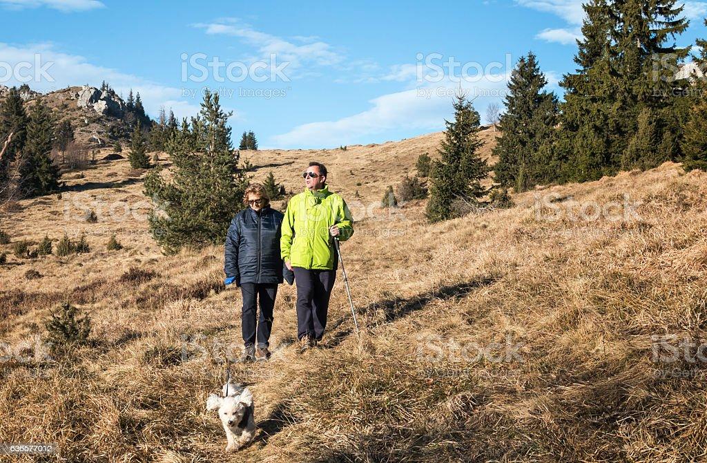 Walk in the fresh air stock photo