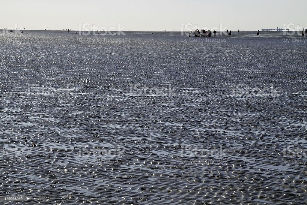 Walk in the mud at Cuxhaven stock photo