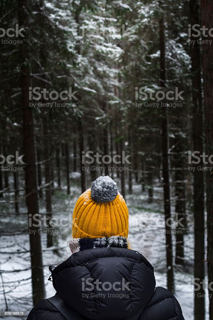 walk in winter forest stock photo