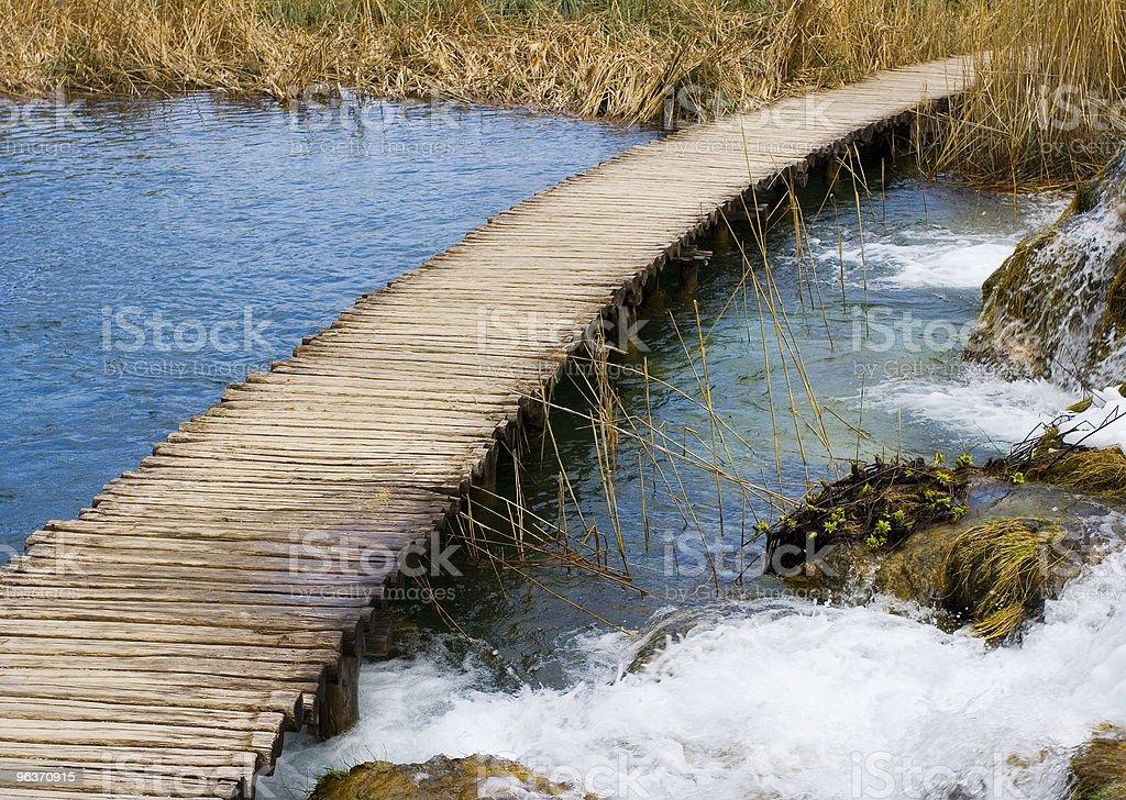 walk into nature royalty-free stock photo