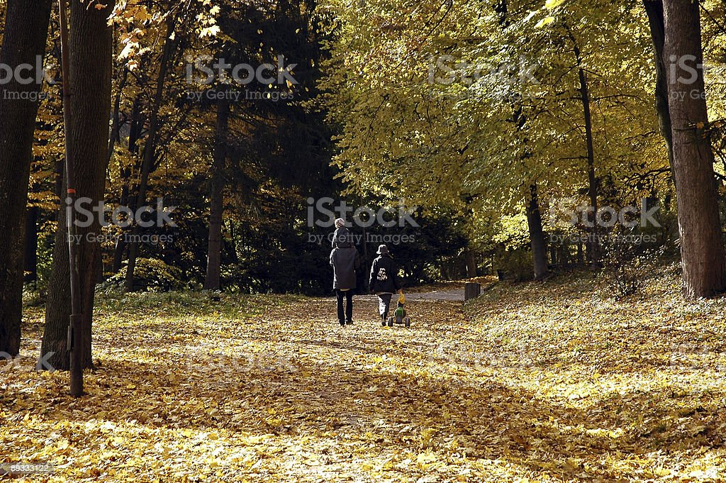 Walk of family in park royalty-free stock photo