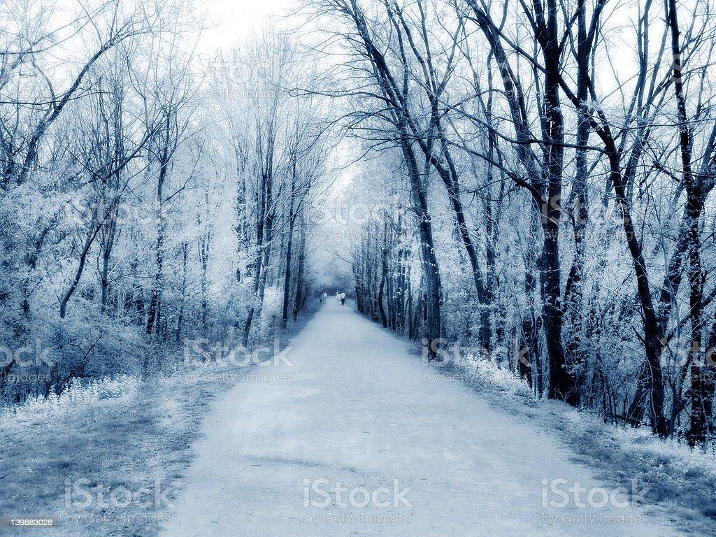 IR Walk royalty-free stock photo