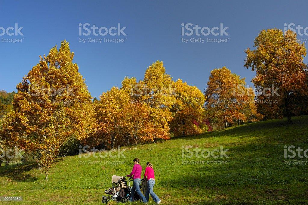 Walk through an autumn park royalty-free stock photo