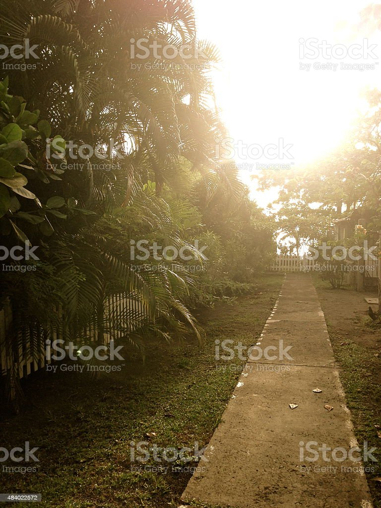 Walk to the Beach royalty-free stock photo