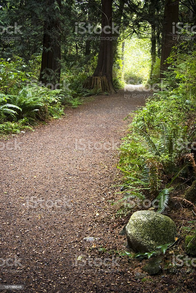 Walk to the light royalty-free stock photo