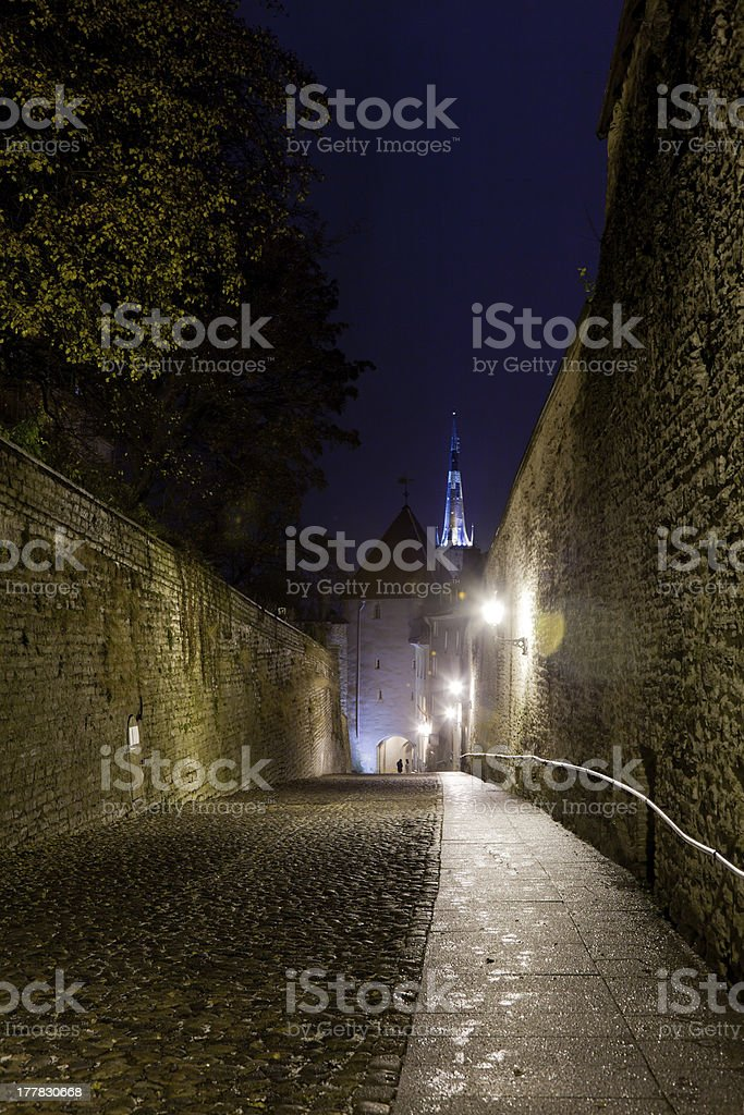Walk to Toompea stock photo