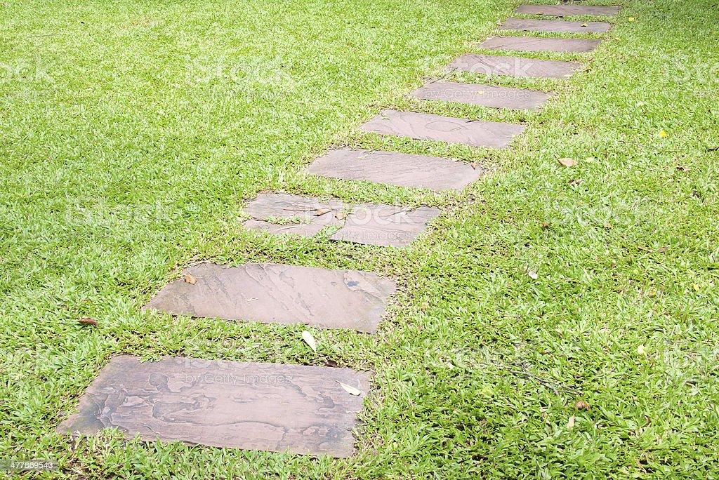 walk way in garden stock photo