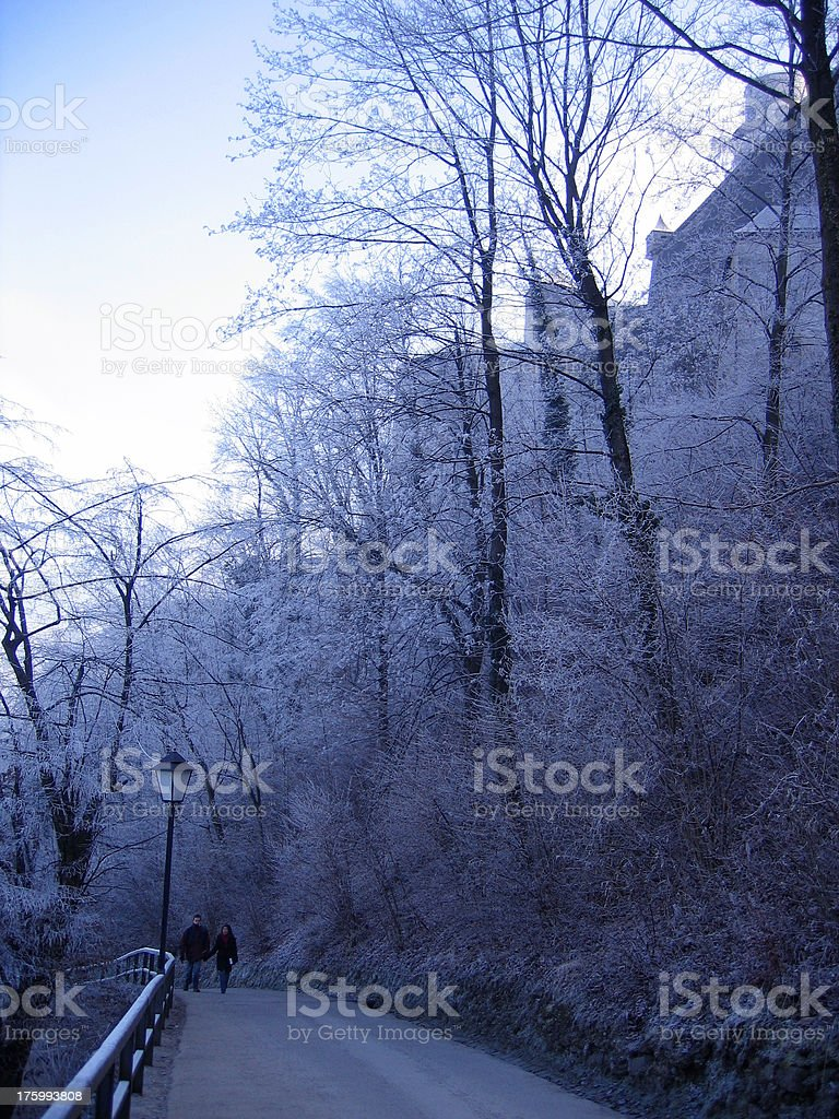 walkaway in winter stock photo