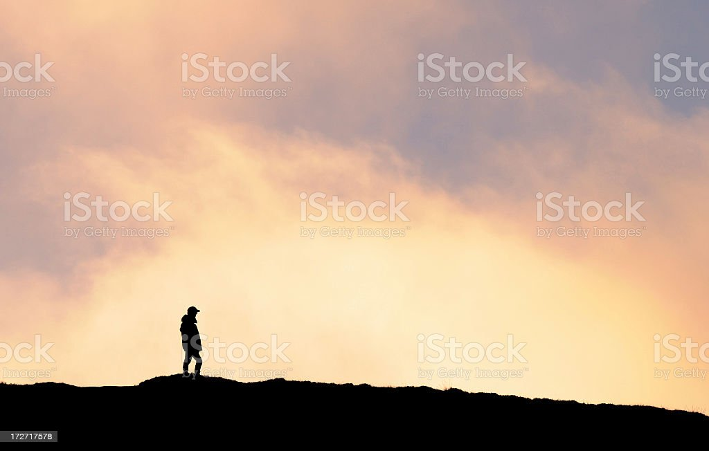 Walker at Sunset royalty-free stock photo