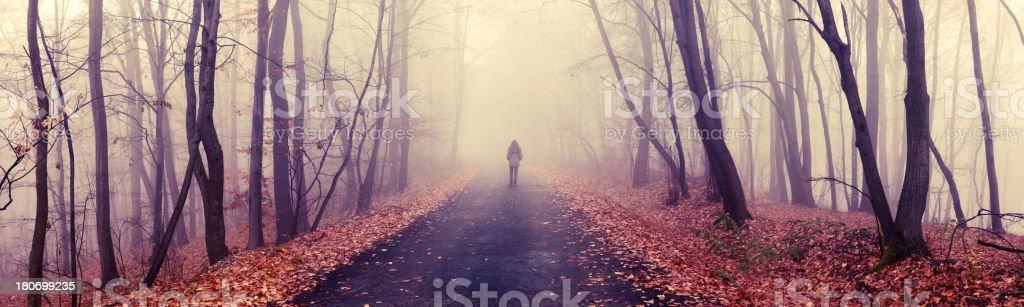 walking alone royalty-free stock photo