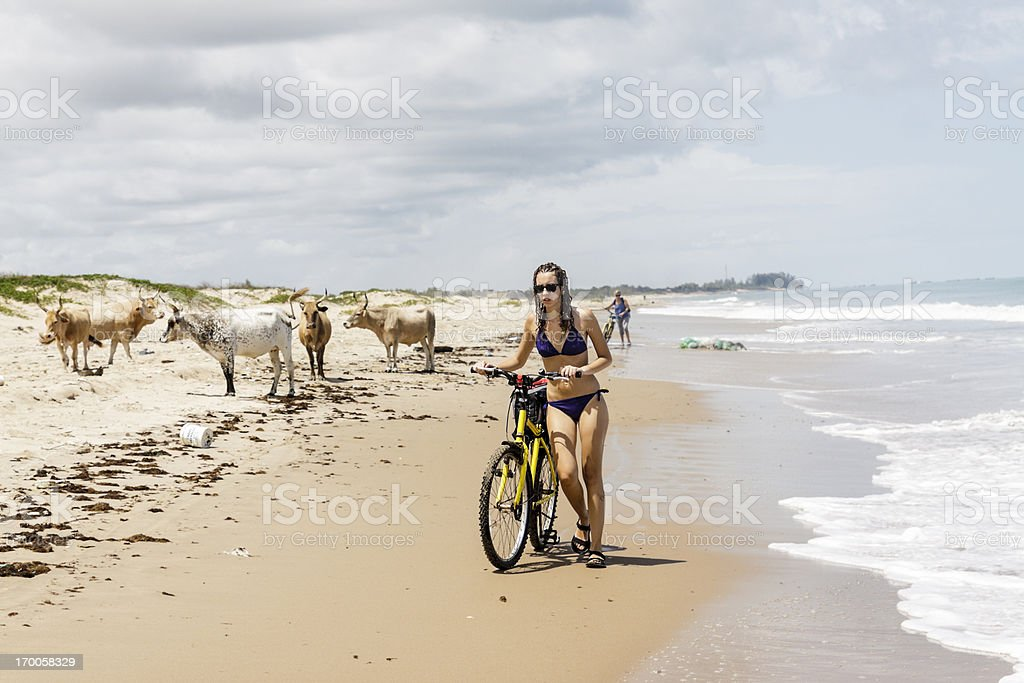 Walking along the beach royalty-free stock photo