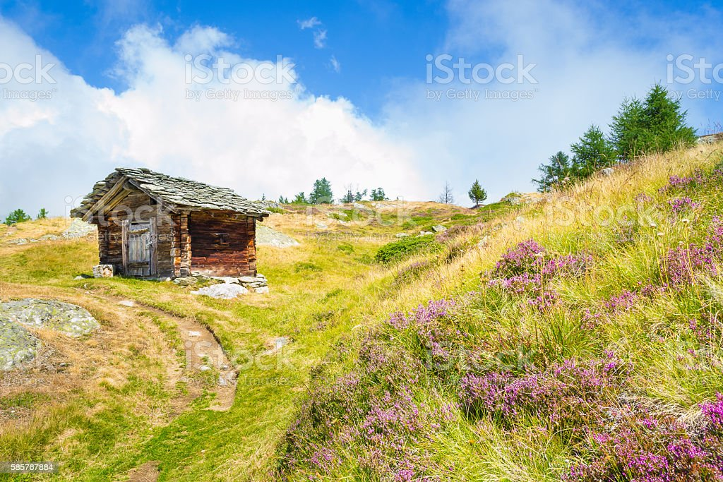 Walking along the paths in the Alps. stock photo