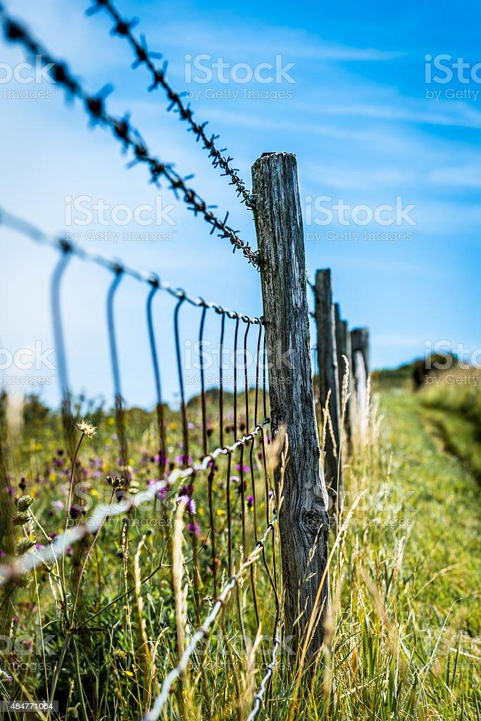 Walking along the White Cliffs of Dover, UK stock photo